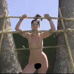 Bound in Bambus 2 - FolterKeller